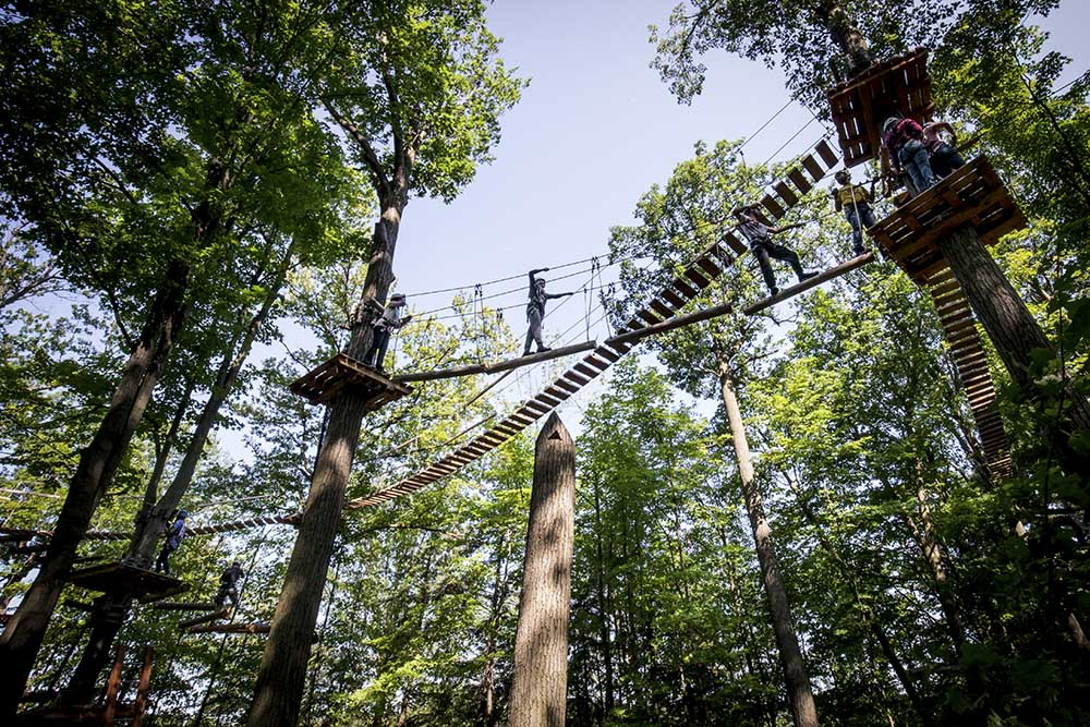 uofgh alumni join up for treetop trekking. Black Bedroom Furniture Sets. Home Design Ideas
