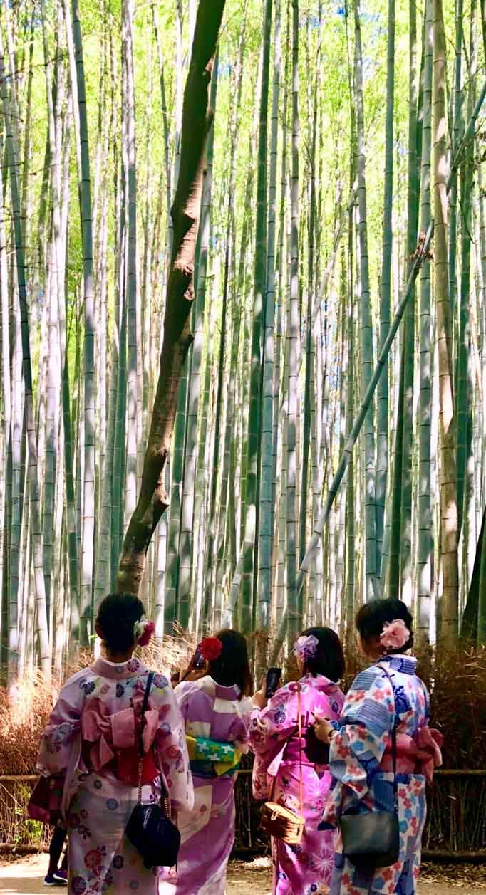 Grand Prize Winner, Japan trip, photo by Alison Cheng