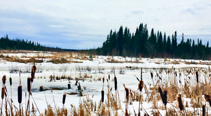 Moose Factory trip, photo by Dominica Kerelchuk