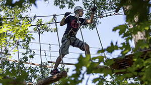 UofGH alumni join up for Treetop Trekking - image